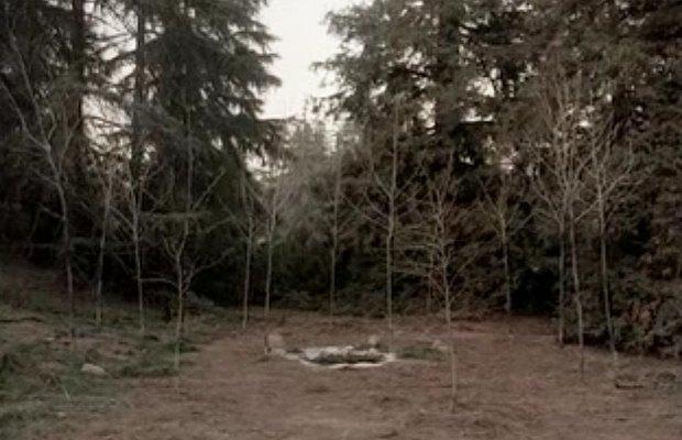 Совы не то, чем кажутся: 33 ответа на главные загадки «Твин Пикса». Изображение № 1.