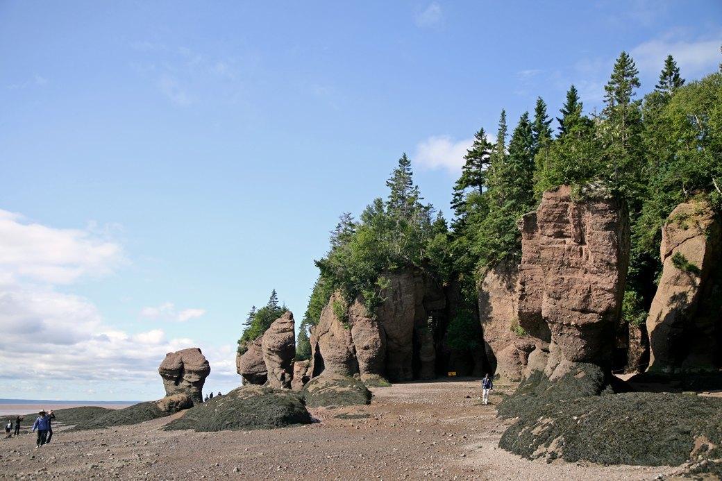 Как я купила мотоцикл и за неделю проехала побережье Канады. Изображение № 4.