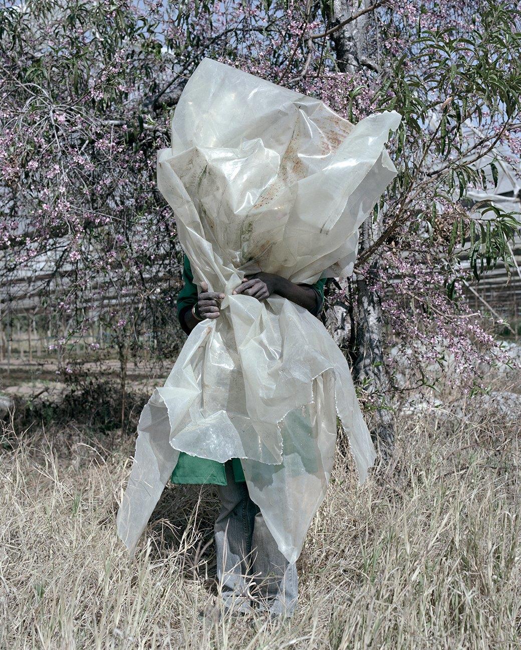 «Местность»: Обезличенный труд африканских крестьян. Изображение № 5.