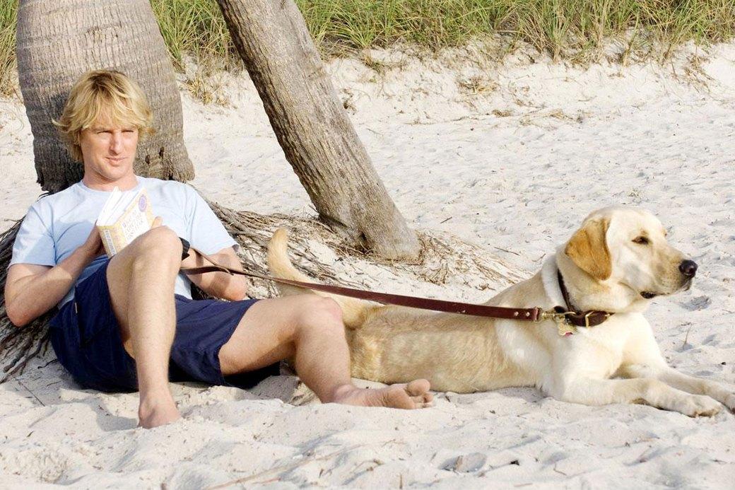 Верный друг: 10 фильмов с любимыми собаками в важной роли. Изображение № 8.