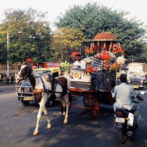 Индия — Непал на автобусе и поезде  за 38 дней. Изображение № 14.