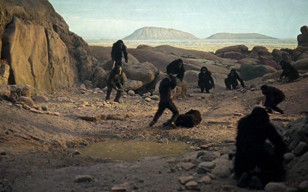 10 фильмов об отношениях человека и обезьяны. Изображение № 2.