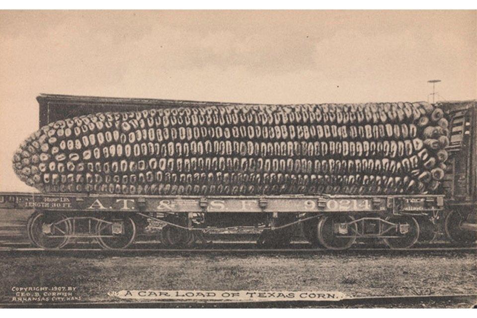 Нет, в 1910 такая кукуруза не росла, а с Джорджем Корнишем, кажется, мы могли бы подружиться — чувство юмора у нас похожее.. Изображение № 11.