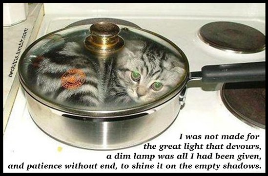 В ожидании кото: Демотиваторы из Беккета. Изображение № 7.