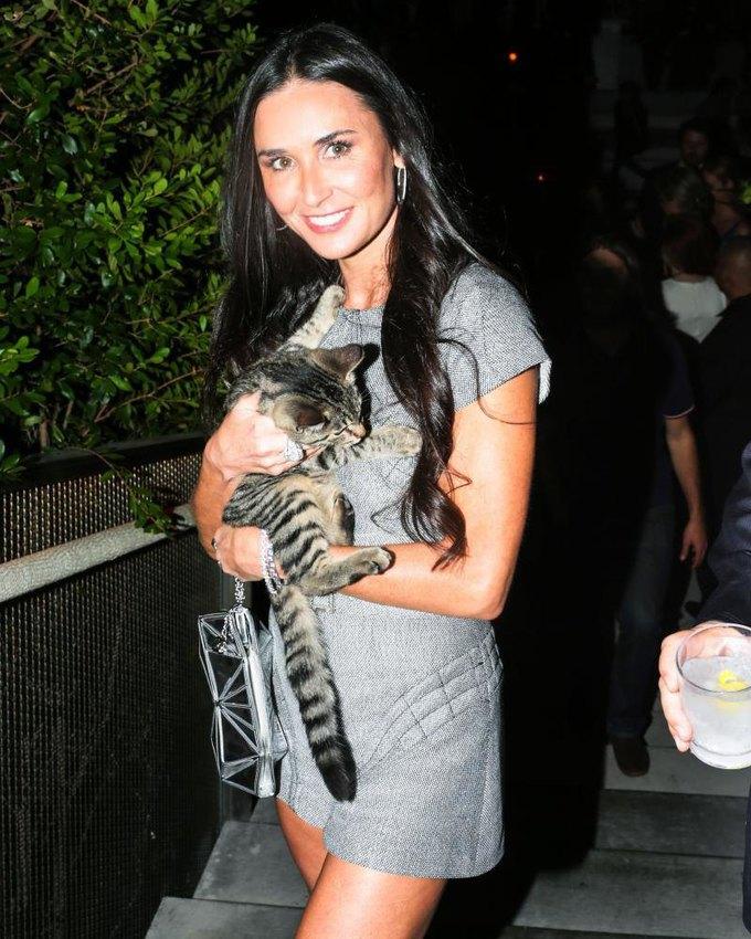 New York Magazine вспомнил самых красивых женщин с кошками. Изображение № 2.