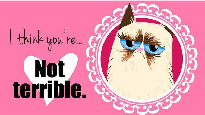 Grumpy Cat стала героиней угрюмых валентинок. Изображение № 7.