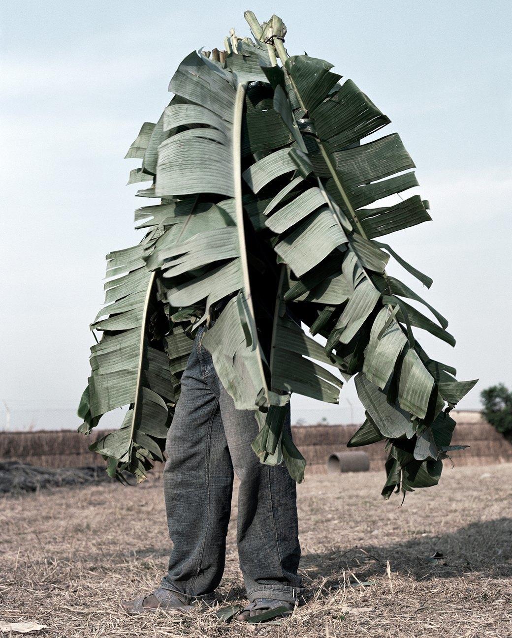 «Местность»: Обезличенный труд африканских крестьян. Изображение № 9.