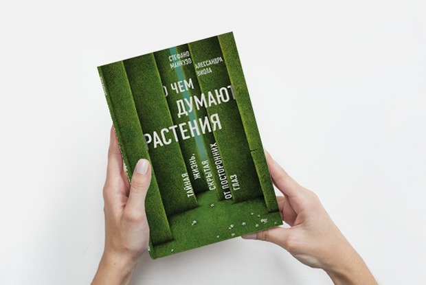 Картинки по запросу книга «О чем думают растения»