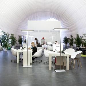 Офис недели (Москва): «В лесу» — Интерьер недели на The Village