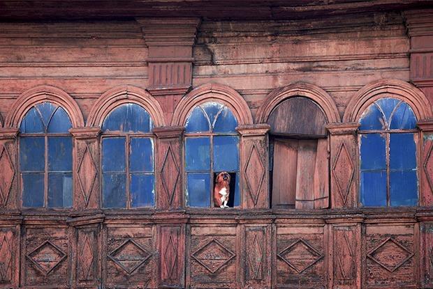 Иркутские окна выставят в Италии — Индустрия на The Village