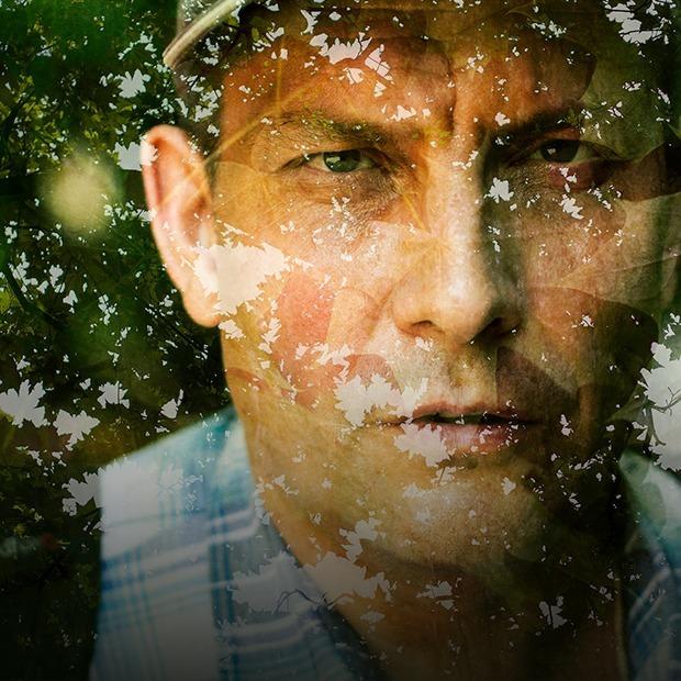 Я работаю лесопатологом — Личный опыт на The Village