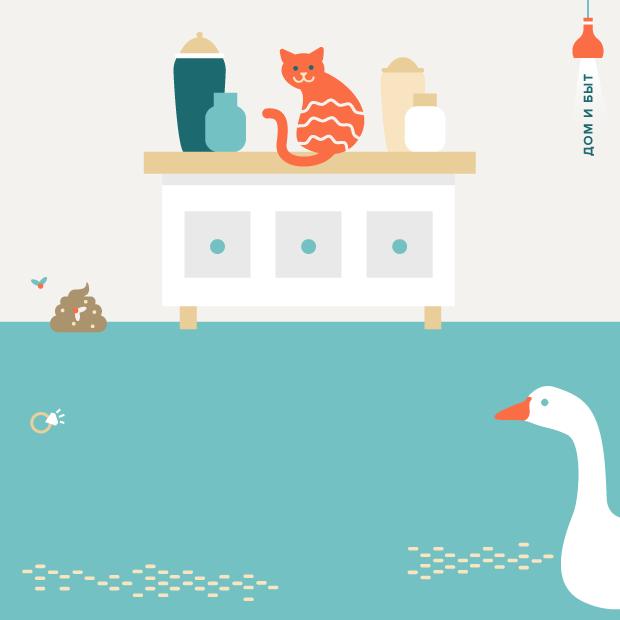 12 странных и необычных заданий по дому от пользователей YouDo — Город на The Village