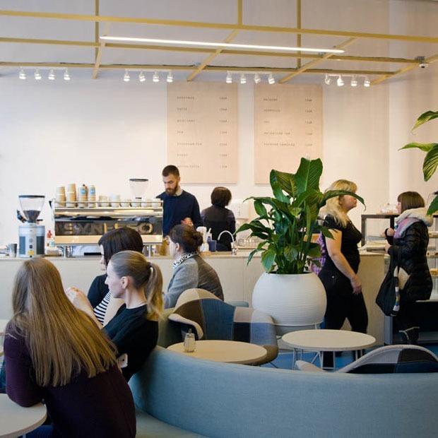 Новое место: Кофейня Duo с видом на сад Павлика Морозова — Место на The Village