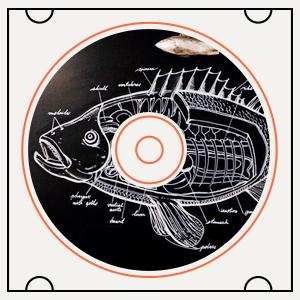 Какая музыка играет в рыбном ресторане Boston Seafood & Bar