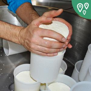 Как открыть итальянскую сыроварню в Иркутске
