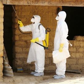 Вирус Эбола наносит ответный удар