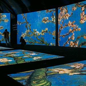 Выставка Van Gogh Alive  — Фоторепортаж на The Village