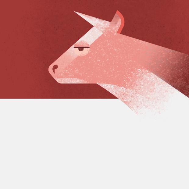 Чем отличается халяльное мясо от кошерного?