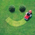 Засохшие газоны и кустарники восстановят ко Дню города