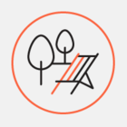 Росреестр зарегистрировал объекты парка «Зарядье» и стадиона «Лужники»
