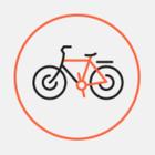 Мусорный бак на новой московской велодорожке
