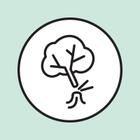 Цифра дня: Баболовский парк продали за бесценок
