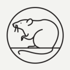 Во сколько Москве обойдётся избавление от крыс