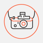 В десяти московских библиотеках будут проводить фотосессии