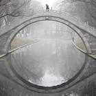 Удивительная жизнь под крышей A Separate Reality – 2!