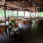 Кафе «Лебединое озеро» откроется 30 апреля
