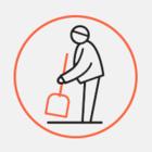 ГАТИ обнаружила 443 нарушения при уборке сосулек в Петербурге