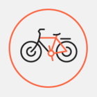 Ночной велопарад пройдет в Москве 8 июля