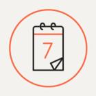 Логотип Петербурга, запрет алкогольных энергетиков и заморозка цен в «О'кее»