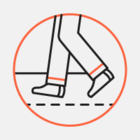 В Москве пройдет фестиваль трейлраннинга adidas Run High