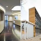 Деревянная архитектура: Летний «Пионер», офис ВТБ и шахматный клуб в Нескучном саду
