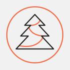 Почта Деда Мороза заработает в Москве 1 декабря