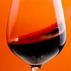 Гид по вину в Петербурге (Часть 1): Теория и винотеки