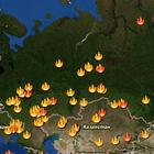 Яндекс.Карты: Когда лесной пожар доберется до тебя?