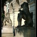 Укротимый Львов