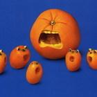 Прикольные овощи, фрукты и забавные факты о них