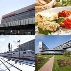 Итоги недели: новое вегетарианское кафе, универсальная карта, дорога до «Сколково»