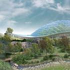 В Петербурге построят природные зоопарки