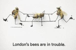 Как у них: «Городские пчёлы» в Лондоне