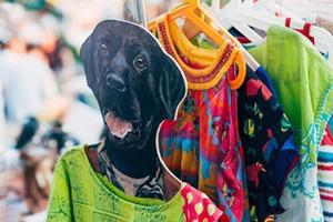 Как продать ненужную одежду и хорошо провести время