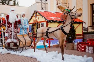 Чем заняться на главной новогодней ярмарке в Сочи