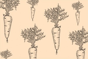 Сезон молодых овощей: Морковь