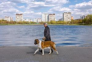 Урбанист Пётр Иванов — о том, различаются ли жители Патриарших и «Фигифино»