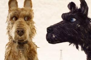 4 русских, 6 всеми любимых и 11 смелых фильмов Берлинского кинофестиваля