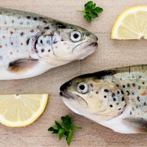 Как люди с аллергией на продукты питаются в ресторанах