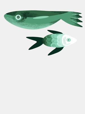 Как выбирать рыбу?